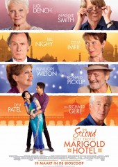 the-second-best-exotic-marigold-hotel-2-v